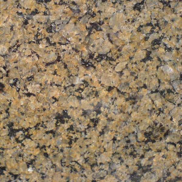 Tropical Brown Granite : Premium tile